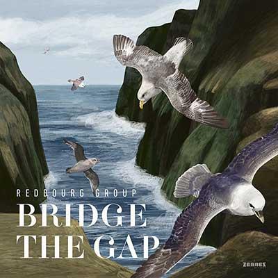Redbourg Group - Bridge the gap (audio cd)